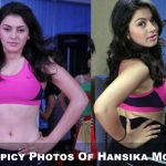 Old Spicy Stills Of Hansika Motwani (0)