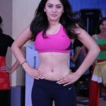 Old Spicy Stills Of Hansika Motwani (1)