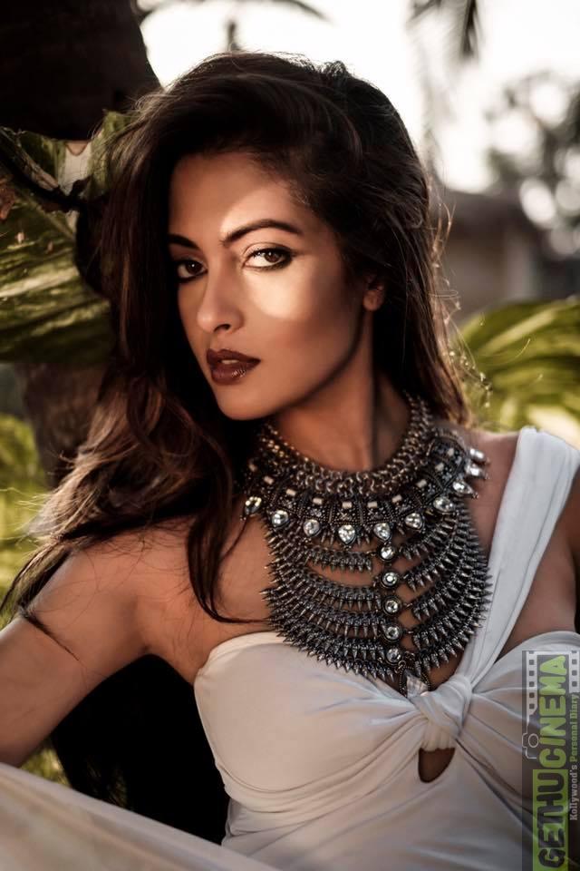Riya Sen Nude Photos 80