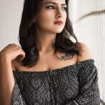 Shraddha Srinath 2017 HD Photos  (17)