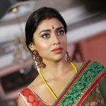 Shriya Saran (22)