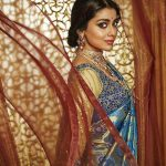 Shriya Saran Recent HD Photoshoot for CMR Shopping Mall (11)