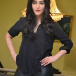 Shruti-Hassan (23)