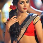 Spicy photos of Actress Catherine Tresa (6)