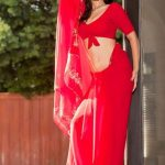 Sunny Leone Spicy Images In Red Saree (3)