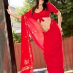 Sunny Leone Spicy Images In Red Saree (5)