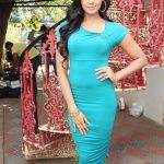 Karthika Nair (3)