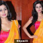 Shamili  (1)