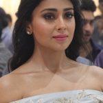 Shriya Saran (2)