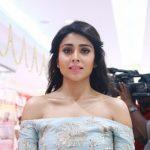 Shriya Saran (4)