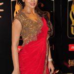Shriya Saran (5)