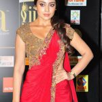 Shriya Saran (7)