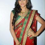 Sushma Raj (13)