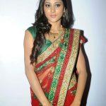 Sushma Raj (15)