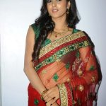 Sushma Raj (20)