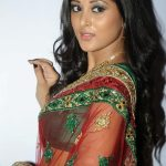 Sushma Raj (31)