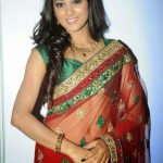 Sushma Raj (4)