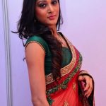 Sushma Raj (6)