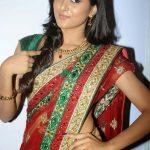 Sushma Raj (9)