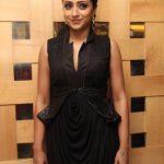 Trisha Krishnan (17)