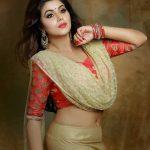 Poorna aka Shamna Kasim (20)