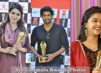 Zee Cinemalu Award Photos