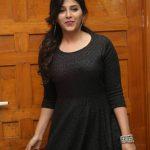 Anjali At Chitrangada  Success Meet Gallery (11)