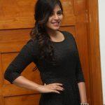 Anjali At Chitrangada  Success Meet Gallery (12)