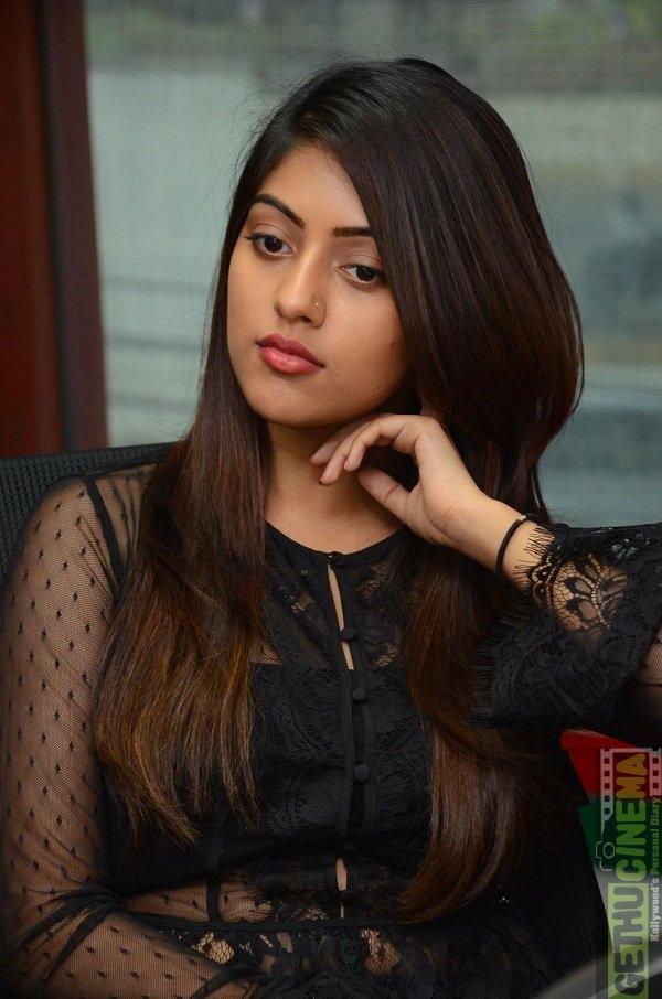 actress anu emmanuel latest gallery   gethu cinema