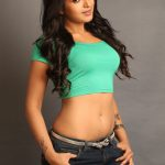 Catherine Tresa Hot Hd Photo Shot (12)