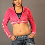 Catherine Tresa Hot Hd Photo Shot (17)