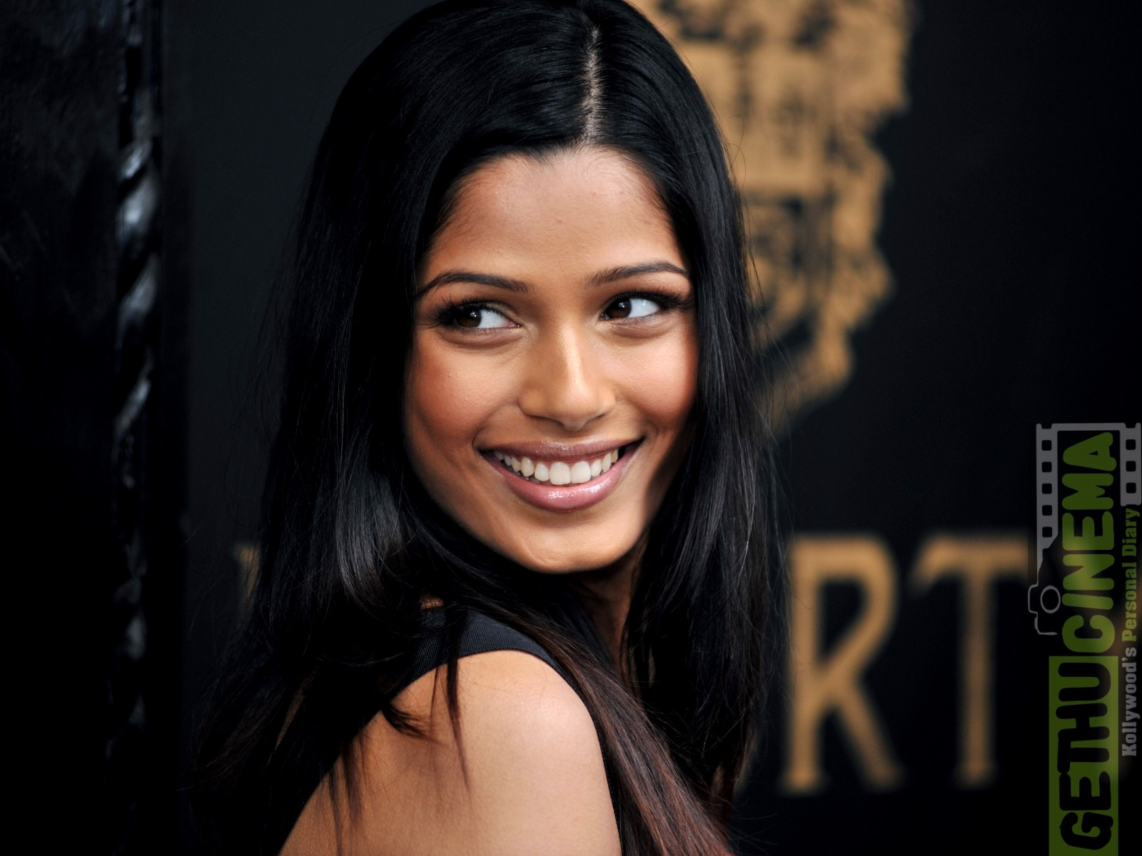 Actress Freida Pinto gallery - Gethu Cinema фрида пинто