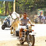 Kadugu Movie Latest Photos (4)