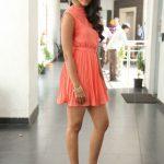 Pooja Hegde (20)