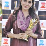 Zee Cinemalu Awards  (1)