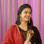 Zee Cinemalu Awards  (2)