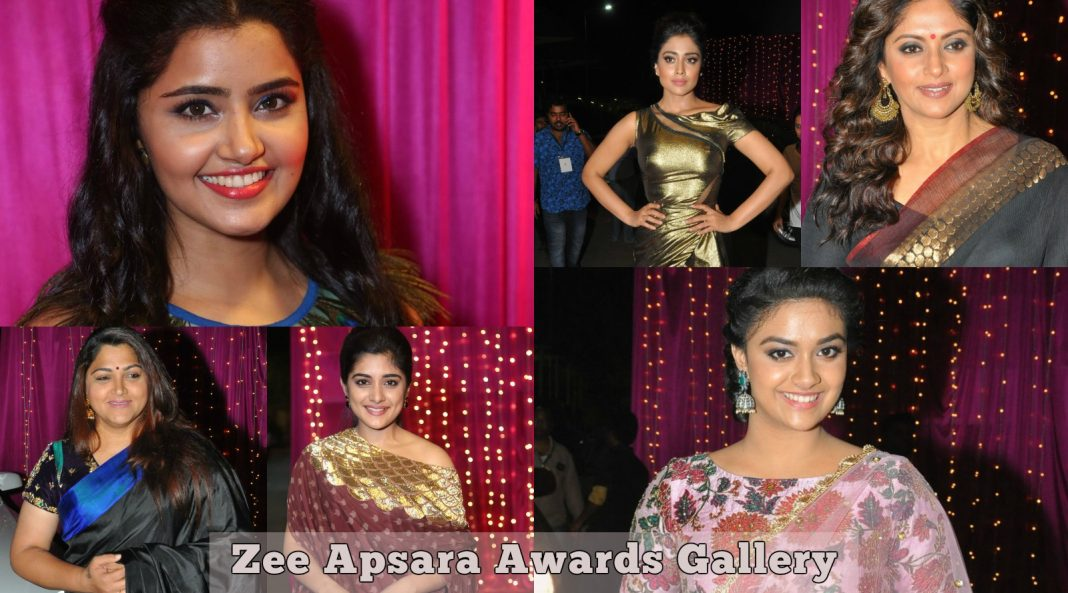 Zee Apsara Awards Celebrity