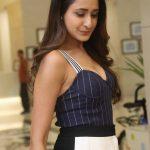 Pragya Jaiswal (15)