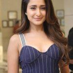 Pragya Jaiswal (9)