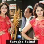 Sayesha Saigal, Vanamagan (1)