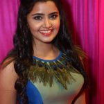 ZeeApsaraAwards (27)