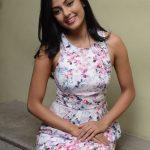 Anisha Ambrose 2017 new (17)