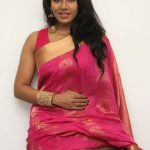 Saravanan Irukka Bayamaen Press Meet Stills  (10)