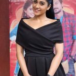 Saravanan Irukka Bayamaen Press Meet Stills  (8)