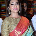 Shriya Saran 2017 hd latest (10)