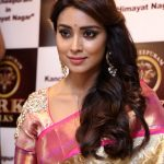 Shriya Saran 2017 hd latest (14)
