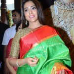 Shriya Saran 2017 hd latest (15)