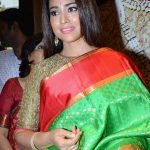 Shriya Saran 2017 hd latest (3)