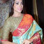 Shriya Saran 2017 hd latest (6)