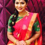 Shruti Reddy 2017 saree pics (2)